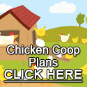 Chicken Coops On Wheels