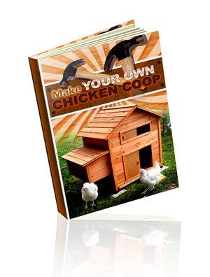 Make Your Own Chicken Coop